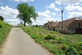 Cesta-pri-farme
