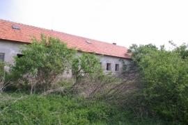 Stromy-a-kriky-sa-musia-upravit (1)