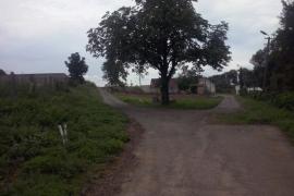 Nádherny-gastan-na-farme